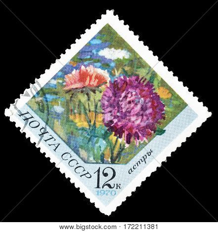 SOVIET UNION - CIRCA 1970 : Cancelled postage stamp printed by Soviet Union, that shows Aster flower.