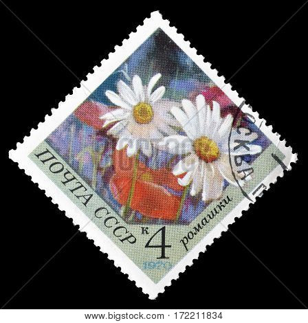 SOVIET UNION - CIRCA 1970 : Cancelled postage stamp printed by Soviet Union, that shows Camomile flower.