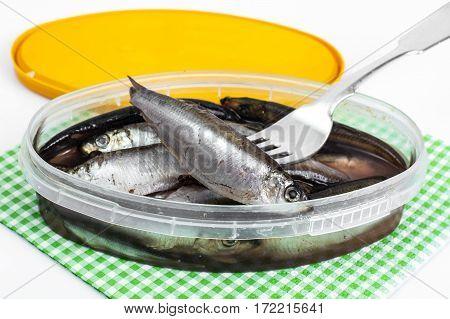 Salted sprats in plastic jar. Studio Photo