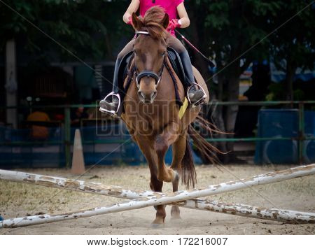 Horse Jumping And Running.