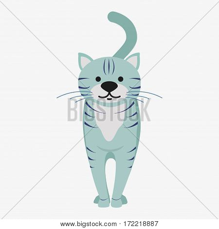Cat Vector Illustration