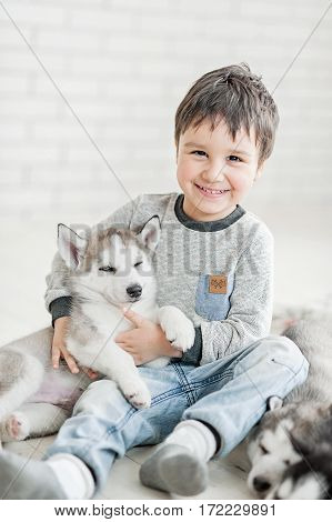 Cute little boy with three young husky puppies sleeping on a white background