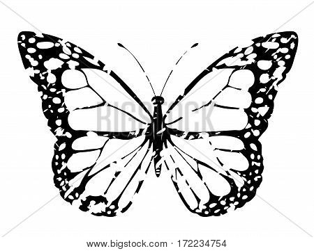 vector illustration of grunge butterfly icon. butterfly black and white silhouette