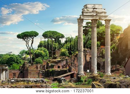 The ruins of the Roman Forum. Rome. Italy