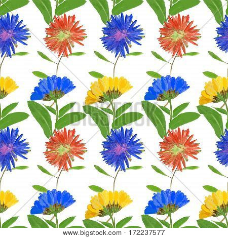Aster Michaelmas daisy Marigold calendula officinalis. Texture of flowers. Seamless pattern for continuous replicate. Floral background photo collage for production of textile cotton fabric. For use in wallpaper covers.