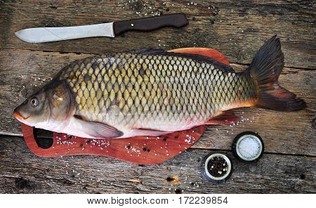 Fresh raw wild carp with sea salt and pepper on old wooden background.