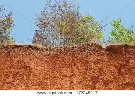 Layered Cut Of Soil.