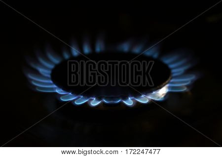 Gas Flame On Domestic Stovetop