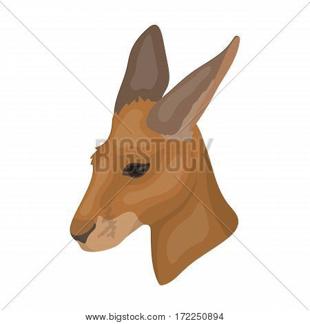 Kangaroo icon in cartoon design isolated on white background. Realistic animals symbol stock vector illustration.