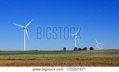 Wind turbines farm using renewable energy to generate electrical power. Renewable energy is most sustainable way of power generation.