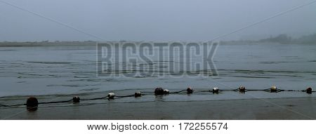 buoys on the water in the fog