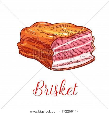 Brisket vector sketch. Pork, beef or veal meat bacon ham or lard lump. Isolated smoked steak and tenderloin or sirloin fillet delicatessen meaty product for farm butchery shop and grocery store