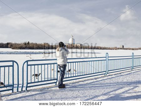 horizontal image of a caucasian woman standing at the edge of a blue metal fence next to a frozen lake in the winter and taking pictures of ducks wandering around on the lake pecking for food.