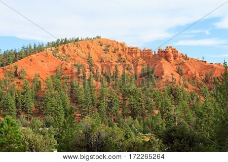 Red Canyon Panorama, Utah, Usa