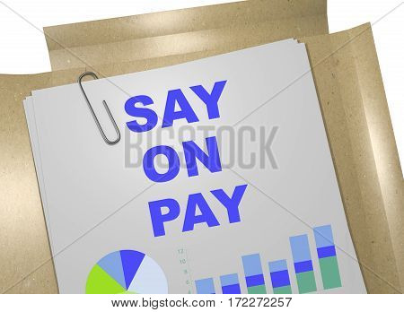 Say On Pay Concept