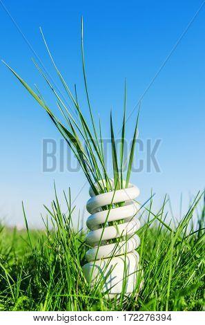 white eco-bulb in green grass. conceptual photo