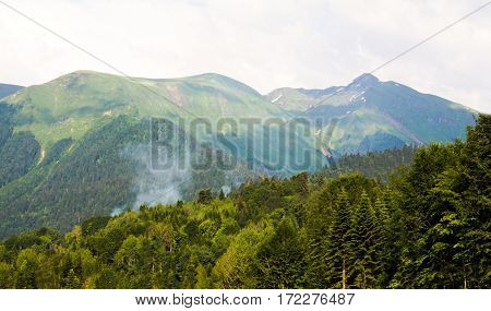 enchanting fairytale view of the green slopes from a height the top of the mountains covered with firs and trees