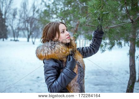 Winter portrait of beautiful young woman with snowflakes on hair, wearing fur and leather coat and black gloves, walking in a park, touching and looking at pine tree branch