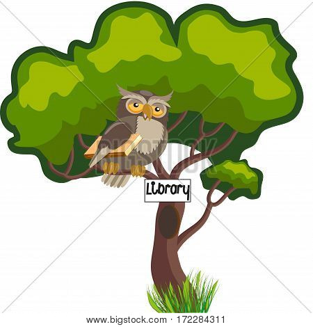 Wise owl with a book on a tree near the hollow-library, isolated on white background, vector illustration