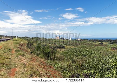 Coastal Landscape Of Natural Green Vegetation In Umhlanga
