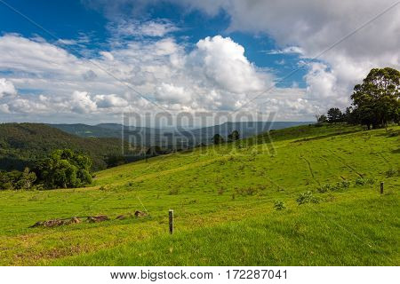 Green Pasture With Tropical Rainforest On The Background