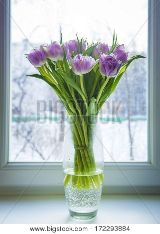 Bouquet of pink tulips in a glass vase on a windowsill