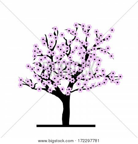 Spring concepy of stylized cherry tree on white background