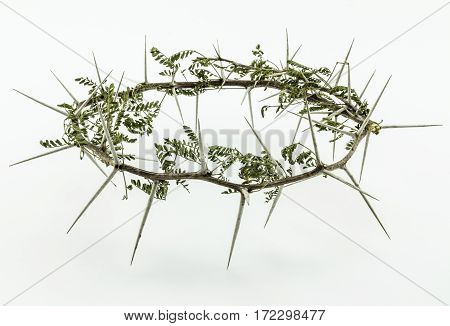 Crown of thorns with leaves - conceptual of Jesus Christ crucifixion