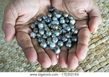 Indigenous Fijian Woman Holds Black Lip Oyster Black Pearls