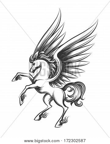 Winged horse engraving vector illustration. Hand drawn pegasus or flying mustang mascot sketch isolated on white background for tattoo