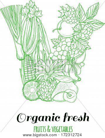 Letter V pattern logo of groceries organic farm fresh fruits and vegetables. Vector illustration logotype. Outline line flat style design. White backdrop.