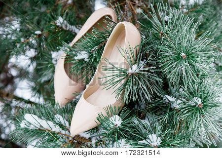 Pair of  beige women heels shoes on Christmas pine tree covered with snow. Winter scene. Fashion and wedding  ideas. Christmas background.