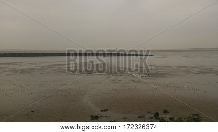 A gloomy overcast view of a shoreline. No sunshine or broken cloud is visible.