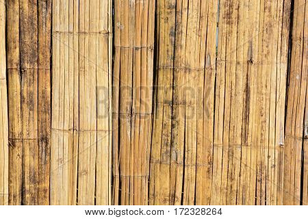 Thai style bamboo texture and background .