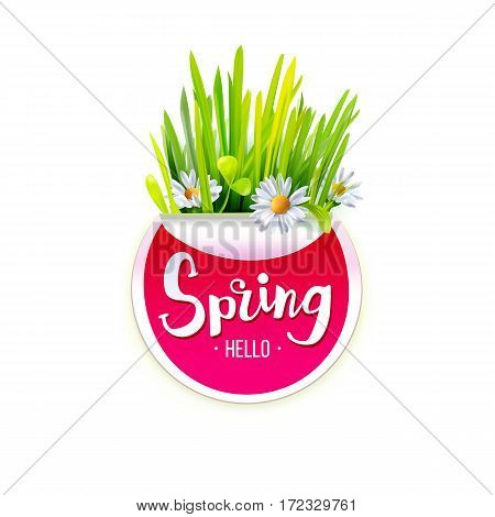 Red Spring label with chamomile flowers and green grass isolated on white background. Spring banner. Vector illustration