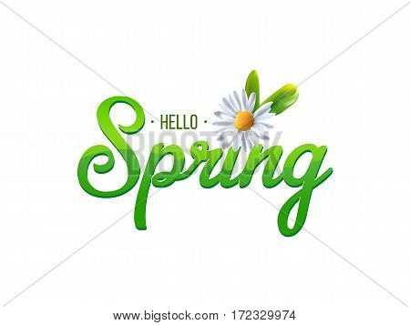 White daisy chamomile flowers on spring word. Vector illustration.