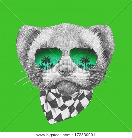 Portrait of Least Weasel with mirror sunglasses and scarf. Hand drawn illustration.