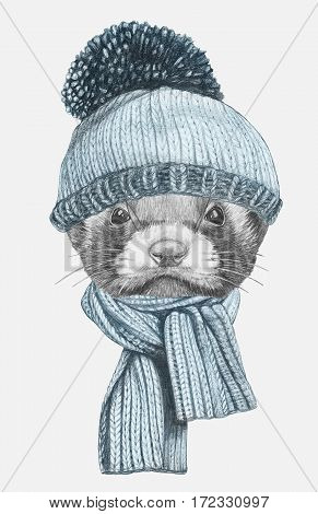 Portrait of Least Weasel with hat and scarf. Hand drawn illustration.