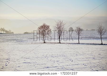 Winter scene of Czech rural mountains with trees and hills covered by snow and ice as a symbol of coldness and winter time