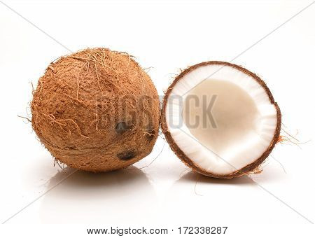 Coconut on a white background in studio