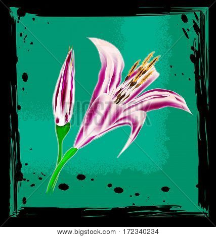 black background with green abstract and colored fantasy flower of lily