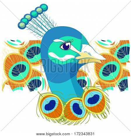 Bird With Peacock Of Feather  Vector Illustration