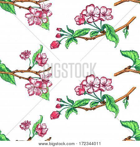 Vector Illustration of Apple tree sketch for Design, Website, Background, Banner. Seamless PatternHand drawn flower Elements. Vintage Spring Template