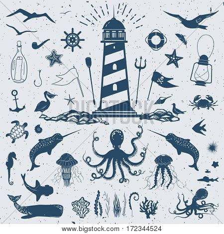big vector set with marine creatures and nautical objects: seagulls, sharks, fish, octopus, crab, starfish, jellyfish, and other hand drawn animals and water plants