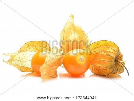 ripe physalis isolated on white background in studio