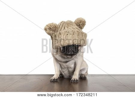 cute pug puppy dog sitting down on wooden floor being annoyed for not seeing anything by knitted hat covering eyes
