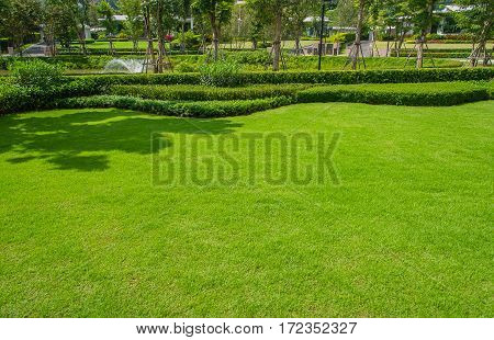 Landscaped Formal Garden,front yard with garden design,Peaceful Garden