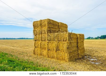 Stacked straw bales in front of a large stubble field in the morning of nice day in the Dutch summer season.