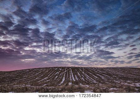Spectacular Sunrise Clouds over Wintry Farming Fields