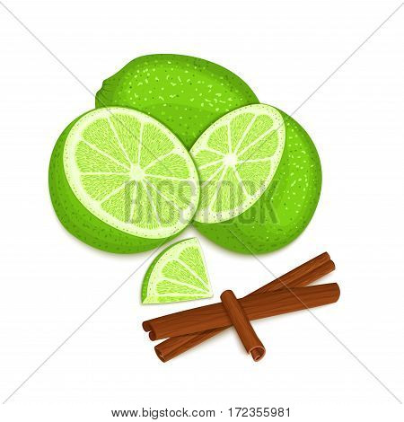 Vector composition of a citrus lime fruit and spice. Green limes whole and cut and cinnamon stick. Group of tasty fruits colorful design for the packaging of juice, breakfast, healthy eating, vegan